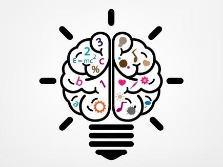 הבנה קריטית ללמידה איכותית