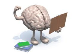 29876305 - human brain with arms, legs and many books on hand, culture power concept.