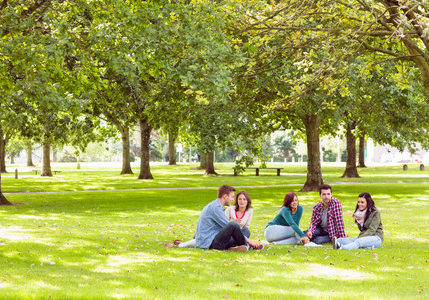 26773201 - group of young college students sitting on grass in the park