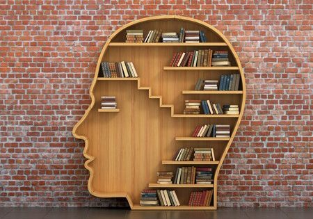 45727447 - concept of training. wooden bookshelf full of books in form of man head on a bricks background. science about human. psychology. a human have more knowledge.
